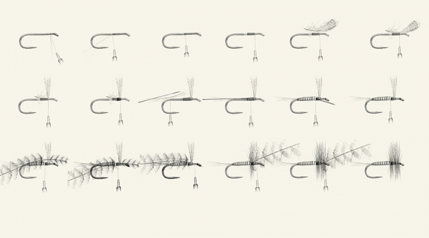 Pencil illustration step by step of dry fly construction